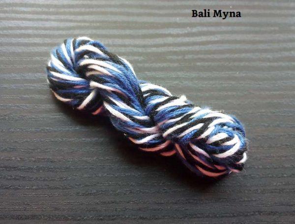Bali Myna