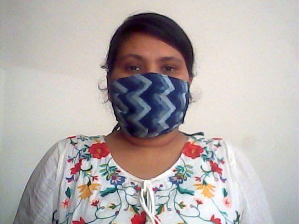 Blue Chevron Face Mask