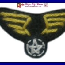 Crochet Air Force Military Badge Applique Pattern