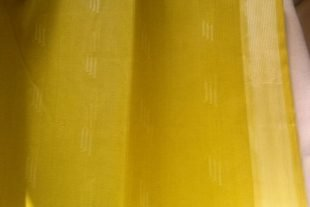 Lime Green Sari Fabric