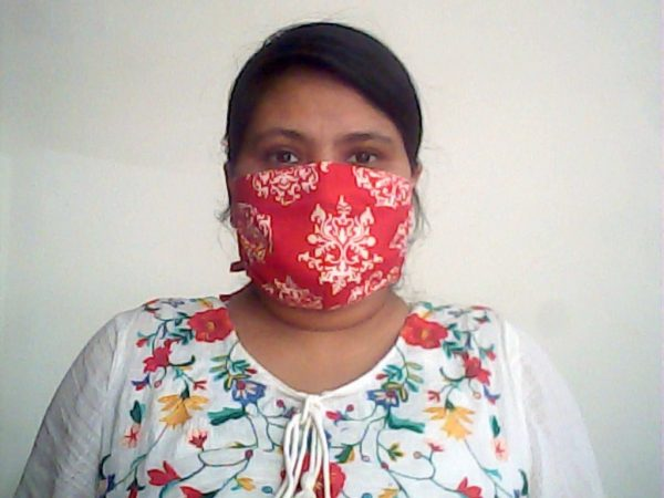 Red Damask Face Mask