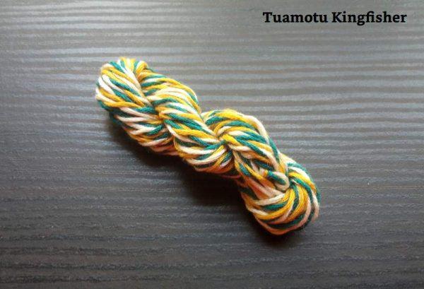 Tuamotu Kingfisher